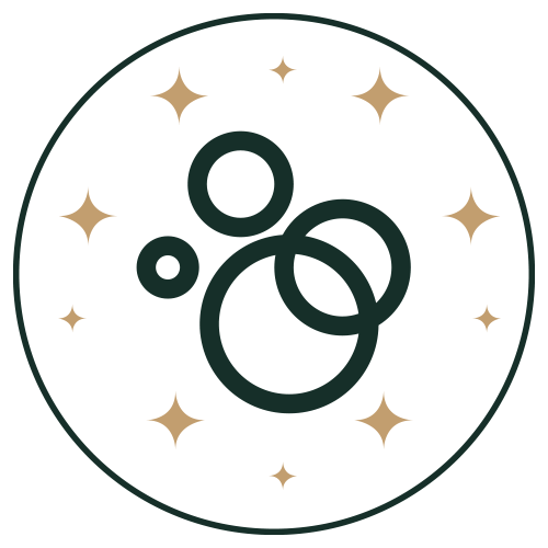 Icon - Soapworks circles surrounded by stars